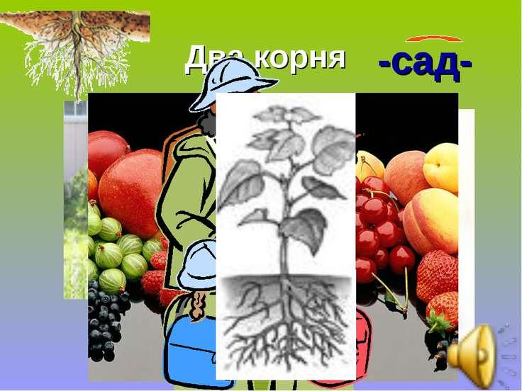 Два корня -сад- Садик Садовник Садовый