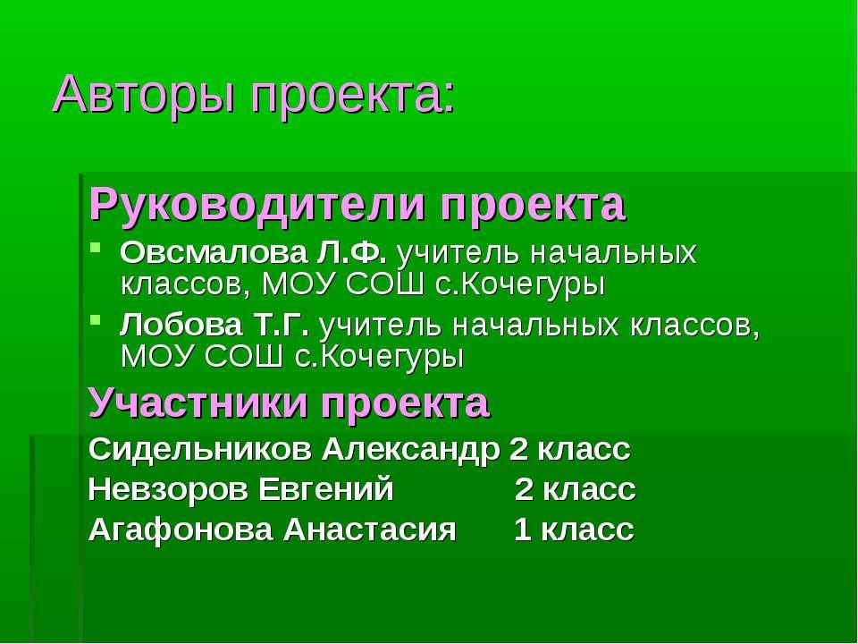 Авторы проекта: Руководители проекта Овсмалова Л.Ф. учитель начальных классов...