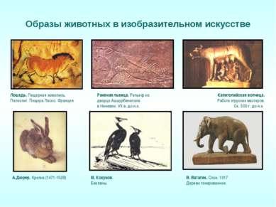 Образы животных в изобразительном искусстве Раненая львица. Рельеф из дворца ...