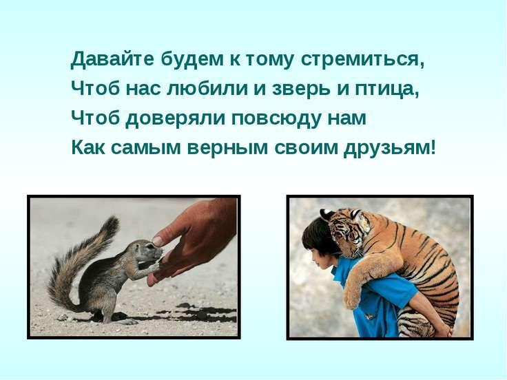 Давайте будем к тому стремиться, Чтоб нас любили и зверь и птица, Чтоб доверя...