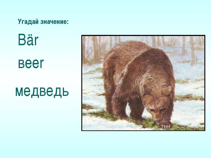 Угадай значение: Bär вeer медведь