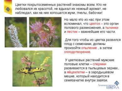 Цветки покрытосеменных растений знакомы всем. Кто не любовался их красотой, н...