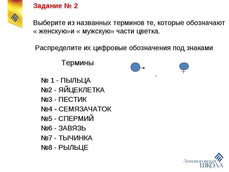 Задание № 2 Выберите из названных терминов те, которые обозначают « женскую»и...