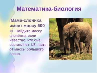 Математика-биология Мама-слониха имеет массу 600 кг. Найдите массу слонёнка, ...
