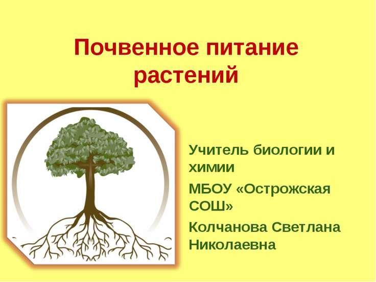 Почвенное питание растений Учитель биологии и химии МБОУ «Острожская СОШ» Кол...