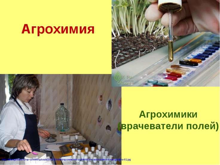Агрохимия http://stavagroland.ru/wp-content/uploads/2012/10/defining-paramete...