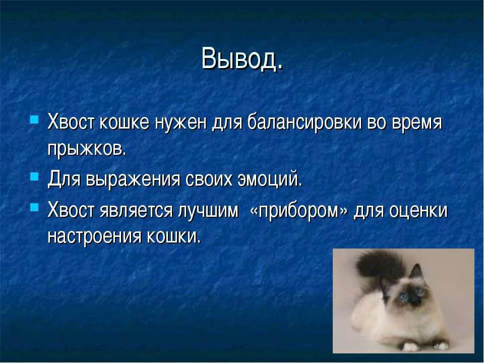 Вывод. Хвост кошке нужен для балансировки во время прыжков. Для выражения сво...