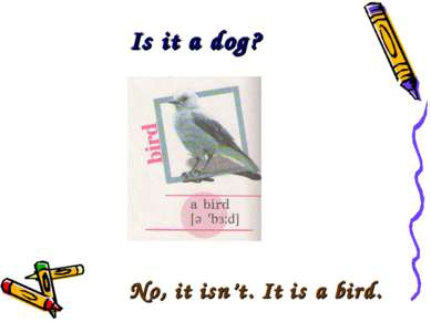 Is it a dog? No, it isn't. It is a bird.