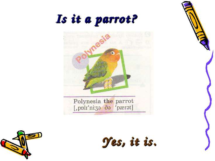 Is it a parrot? Yes, it is.