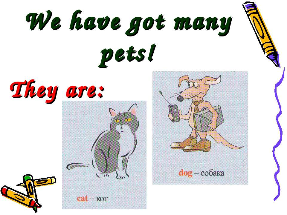 We have got many pets! They are: