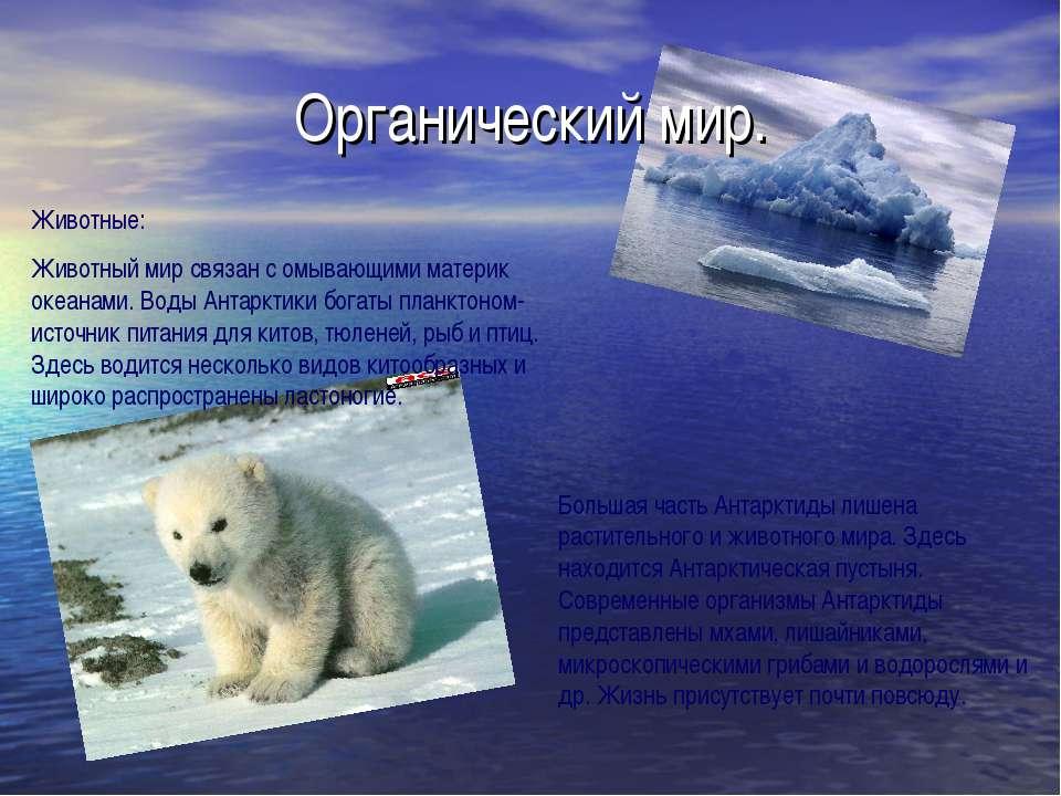 Органический мир. Животные: Животный мир связан с омывающими материк океанами...