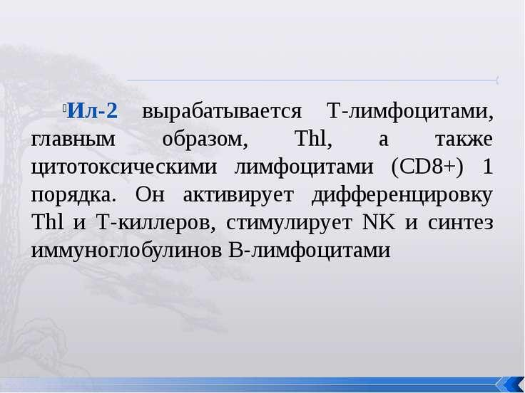 Ил-2 вырабатывается Т-лимфоцитами, главным образом, Thl, а также цитотоксичес...