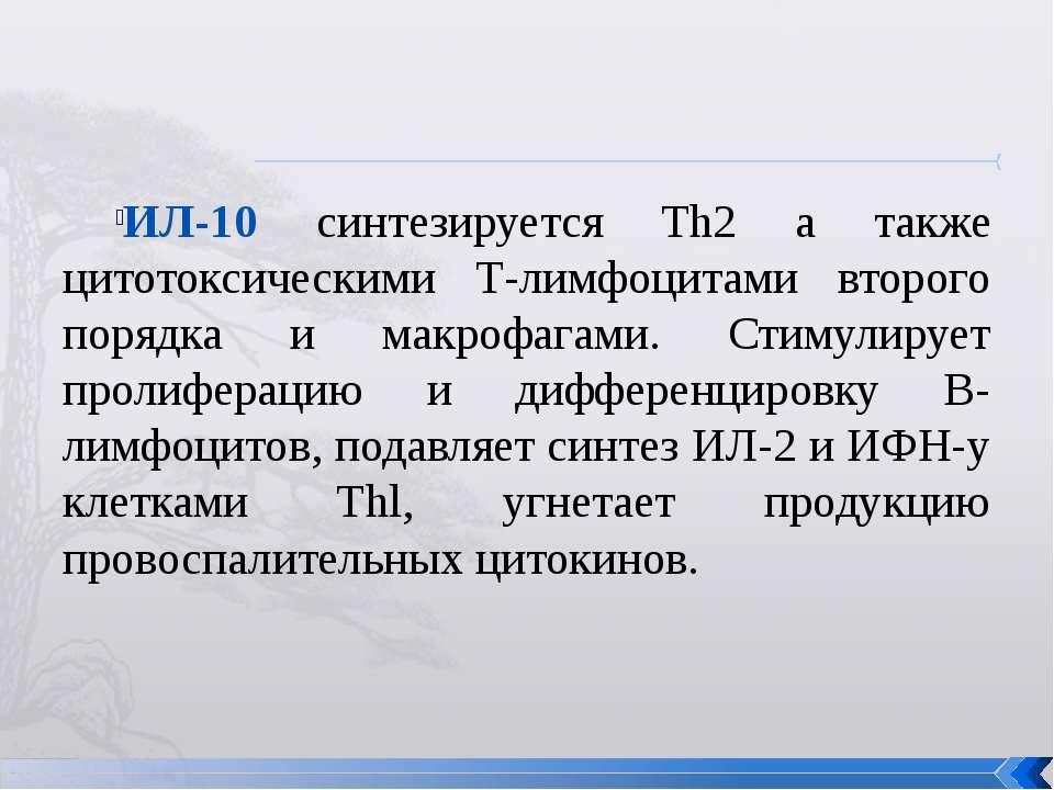 ИЛ-10 синтезируется Th2 а также цитотоксическими Т-лимфоцитами второго порядк...