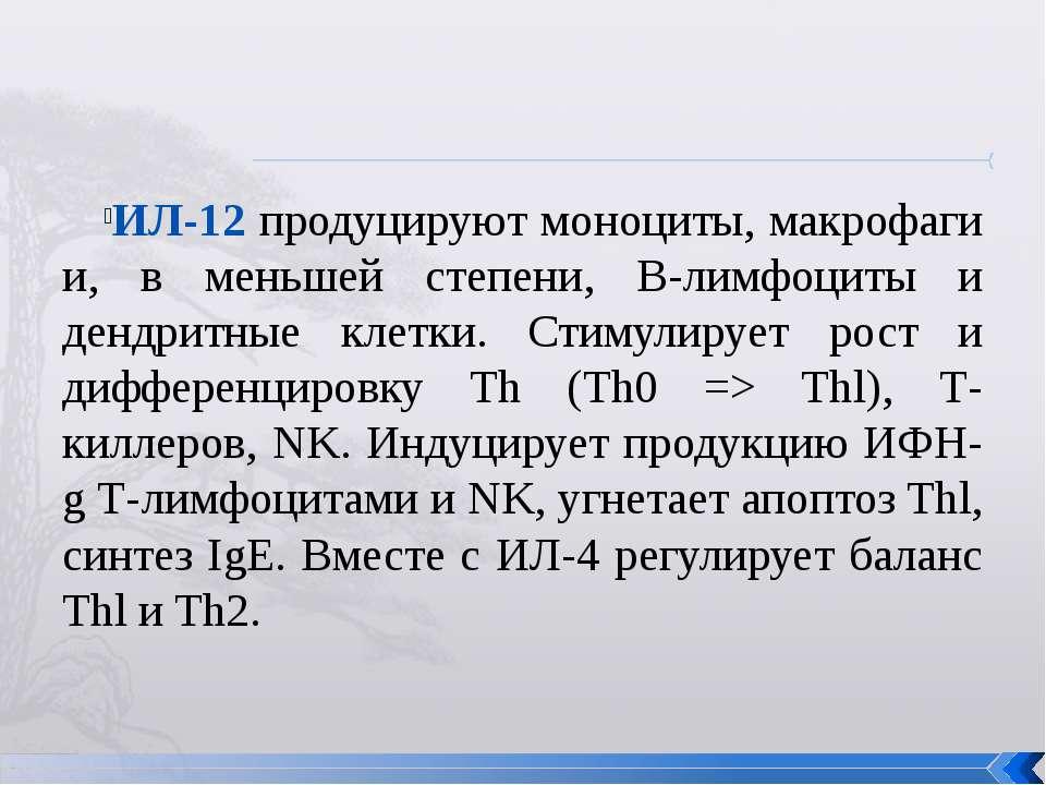 ИЛ-12 продуцируют моноциты, макрофаги и, в меньшей степени, В-лимфоциты и ден...