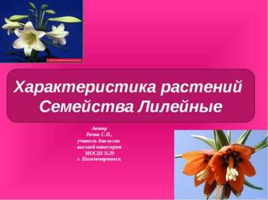 Автор Рачко С.Н., учитель биологии высшей категории МОСШ №29 г. Нижневартовск...