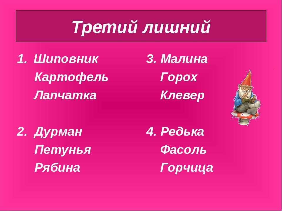 Шиповник Картофель Лапчатка 2. Дурман Петунья Рябина 3. Малина Горох Клевер 4...
