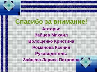 Спасибо за внимание! Авторы: Зайцев Михаил Волощенко Кристина Романова Ксения...