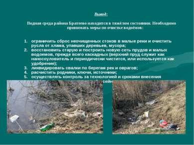 Вывод: Водная среда района Братеево находится в тяжёлом состоянии. Необходимо...