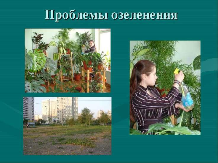 Проблемы озеленения