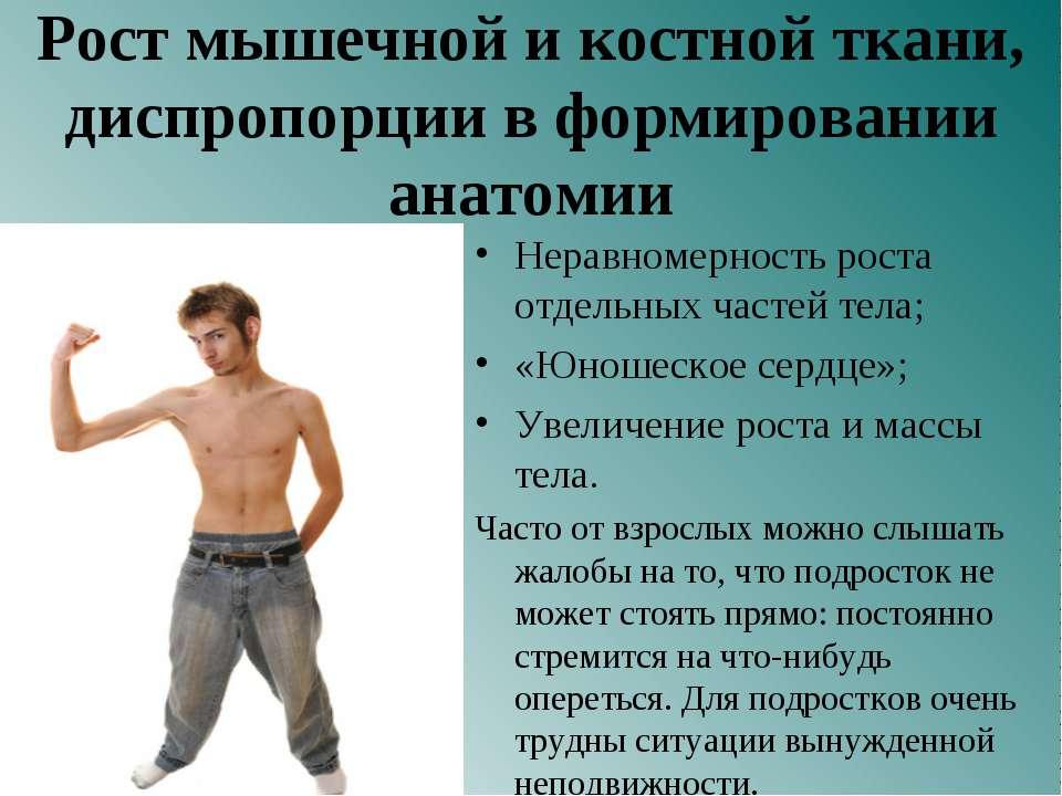 Рост мышечной и костной ткани, диспропорции в формировании анатомии Неравноме...