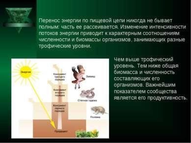 Перенос энергии по пищевой цепи никогда не бывает полным: часть ее рассеивает...