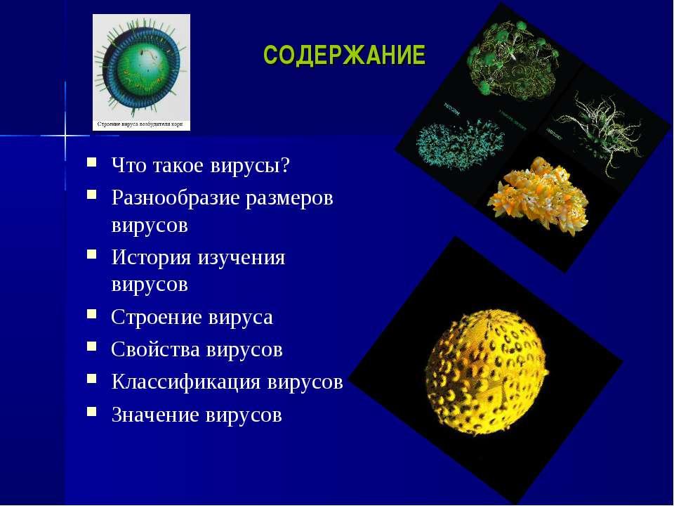 СОДЕРЖАНИЕ Что такое вирусы? Разнообразие размеров вирусов История изучения в...