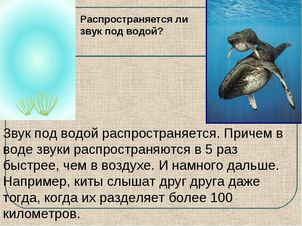 Звук под водой распространяется. Причем в воде звуки распространяются в 5 раз...