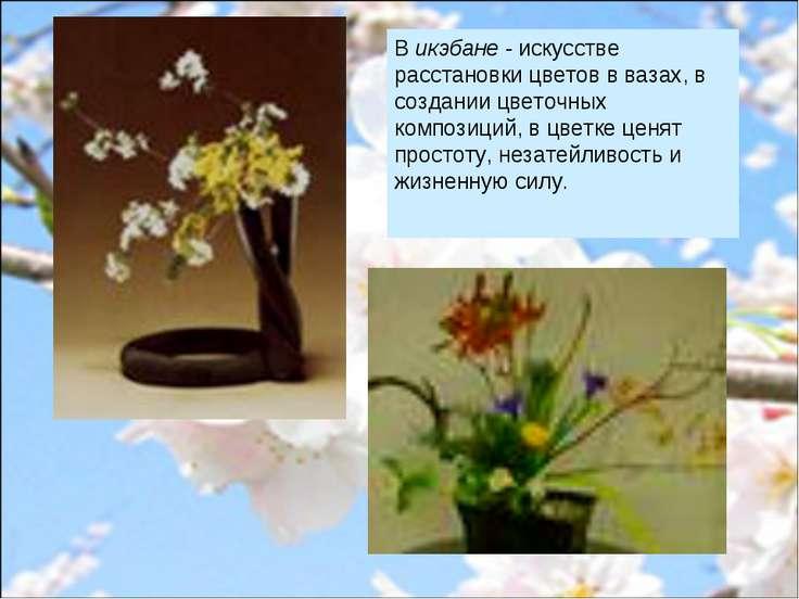 В икэбане - искусстве расстановки цветов в вазах, в создании цветочных композ...