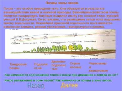 Почвы зоны лесов. Почва – это особое природное тело. Она образуется в результ...