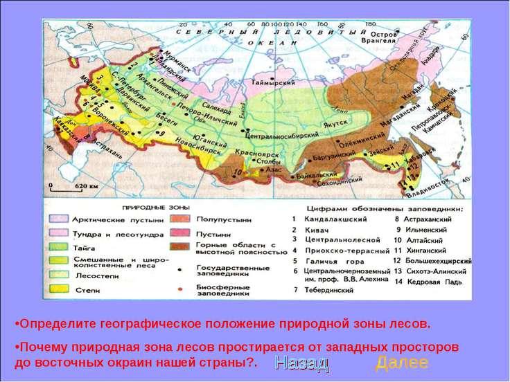 Определите географическое положение природной зоны лесов. Почему природная зо...