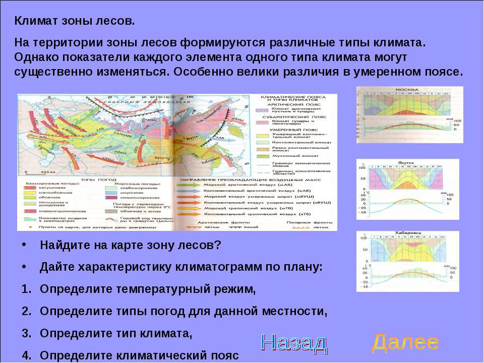 Климат зоны лесов. На территории зоны лесов формируются различные типы климат...
