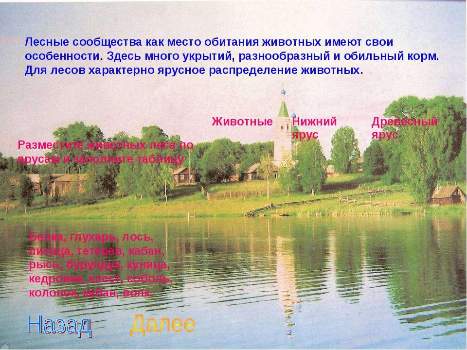 Лесные сообщества как место обитания животных имеют свои особенности. Здесь м...