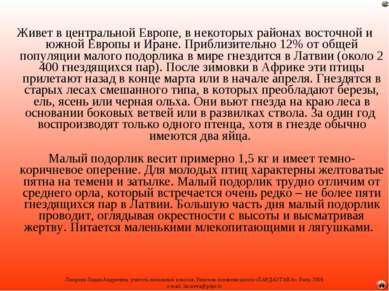 Живет в центральной Европе, в некоторых районах восточной и южной Европы и Ир...