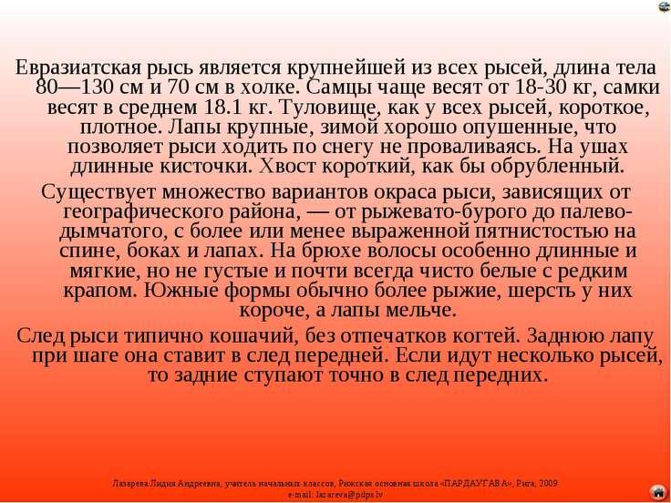 Евразиатская рысь является крупнейшей из всех рысей, длина тела 80—130см и 7...