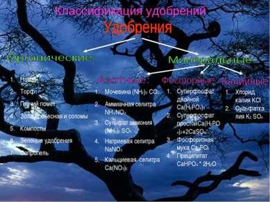 Классификация удобрений Навоз Торф Птичий помет Зола древесная и соломы Компо...