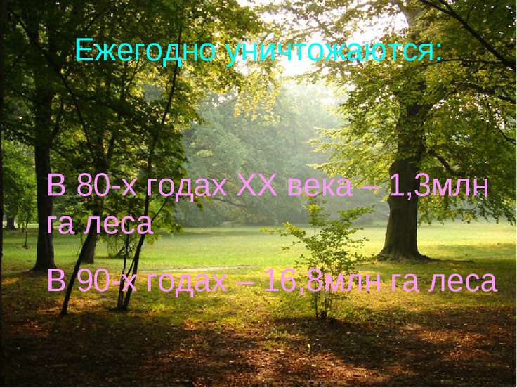 Ежегодно уничтожаются: В 80-х годах XX века – 1,3млн га леса В 90-х годах – 1...