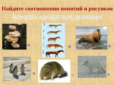 А) Б) В) Г) Д) Е) Найдите соотношения понятий и рисунков