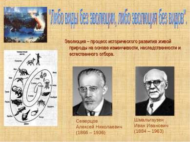 Эволюция – процесс исторического развития живой природы на основе изменчивост...
