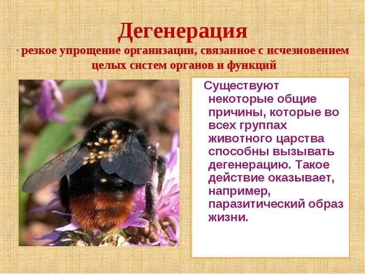 Существуют некоторые общие причины, которые во всех группах животного царства...