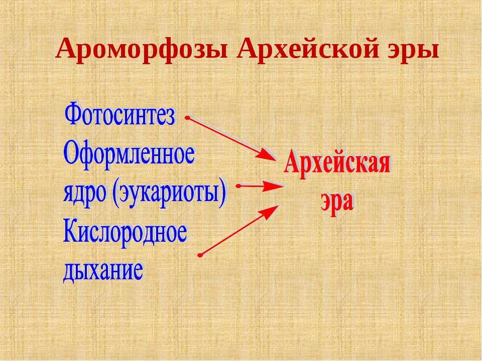 Ароморфозы Архейской эры
