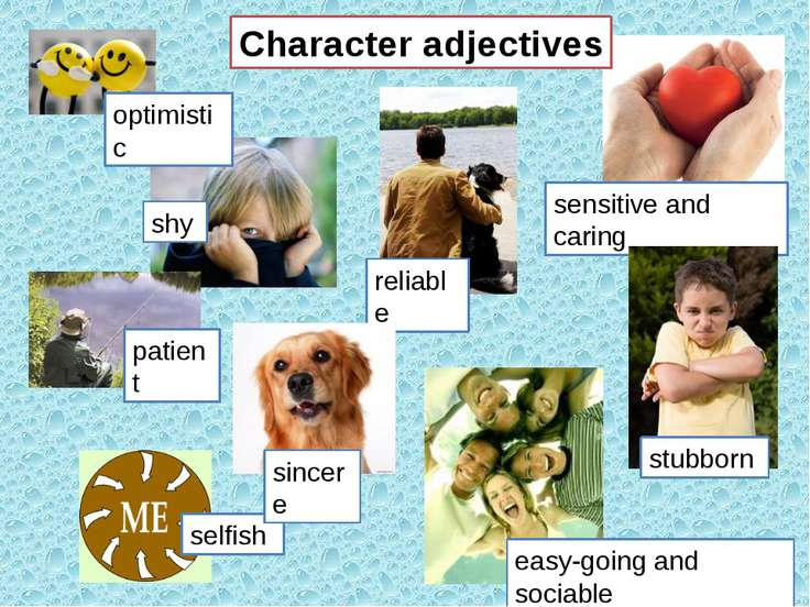 Character adjectives patient optimistic sensitive and caring easy-going and s...