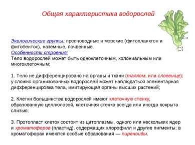 Экологические группы: пресноводные и морские (фитопланктон и фитобентос), наз...