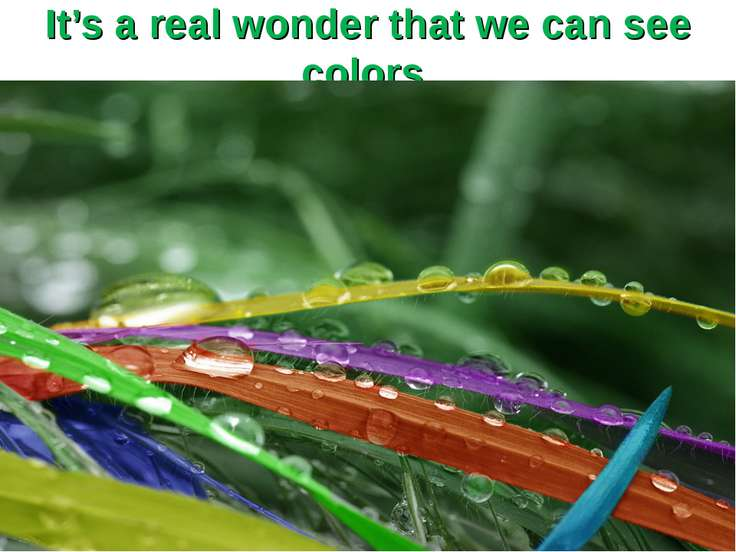 It's a real wonder that we can see colors.