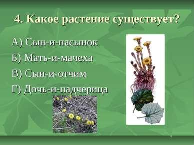 4. Какое растение существует? А) Сын-и-пасынок Б) Мать-и-мачеха В) Сын-и-отчи...