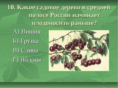 10. Какое садовое дерево в средней полосе России начинает плодоносить раньше?...