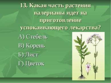 13. Какая часть растения валерианы идет на приготовление успокаивающего лекар...
