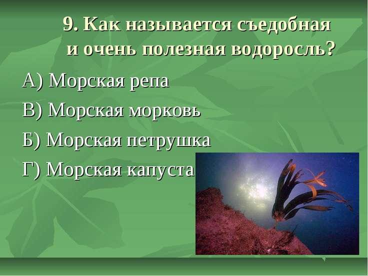 9. Как называется съедобная и очень полезная водоросль? А) Морская репа В) Мо...