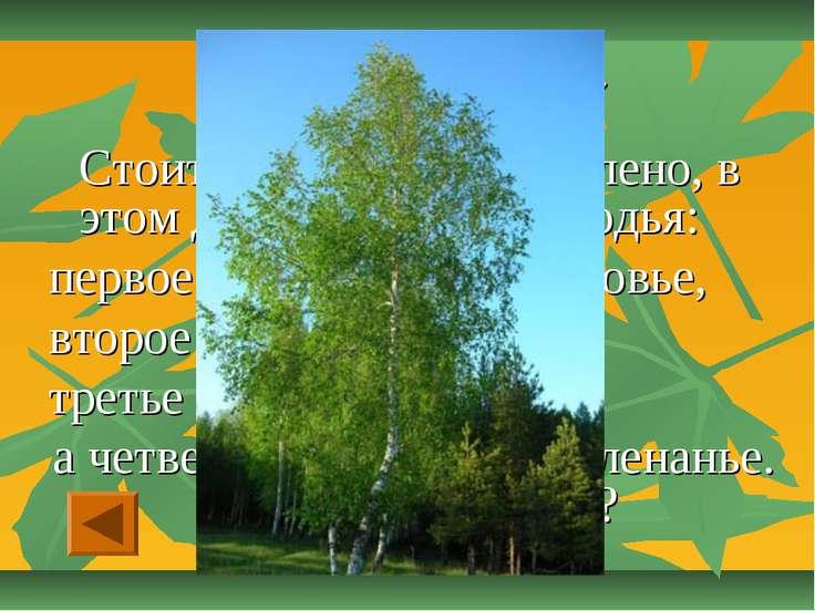 Отгадай-ка - «20» Стоит дерево, цветом зелено, в этом дереве – четыре угодья:...