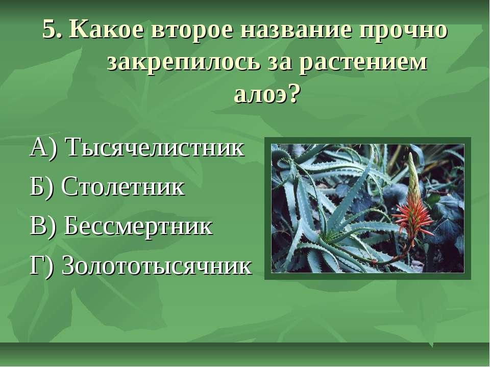 5. Какое второе название прочно закрепилось за растением алоэ? А) Тысячелистн...