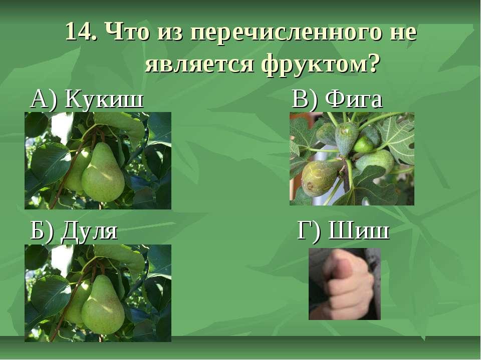 14. Что из перечисленного не является фруктом? А) Кукиш В) Фига Б) Дуля Г) Шиш